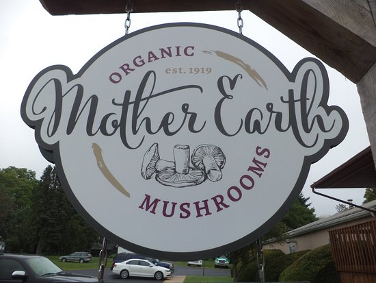 ‪Mother Earth Organic Mushrooms‬