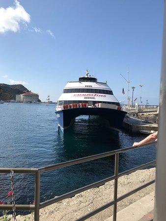 Catalina Island Ferry Dana Point Parking