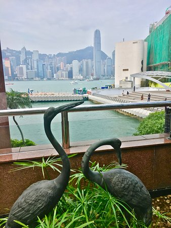 InterContinental Hong Kong: View from outside the hotel