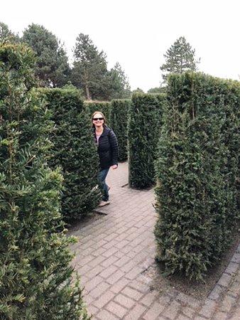 Кёкенхоф: Middle of a maze
