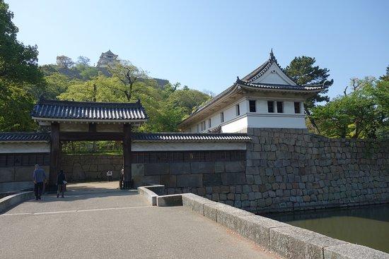 亀山公園 (丸亀城)