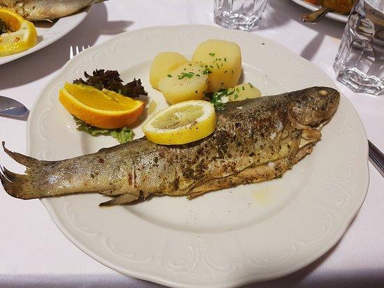 Kongress Stuberl: ปลาทอด