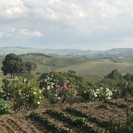 Vallelunga Pratameno, Italia: photo3.jpg