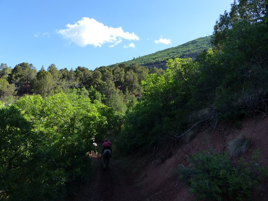 Buckaroo Trail Ride - 2 Hours: A bit of greenery at the beginning
