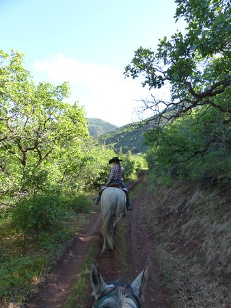 Buckaroo Trail Ride - 2 Hours: Our awesome guide, Brittany