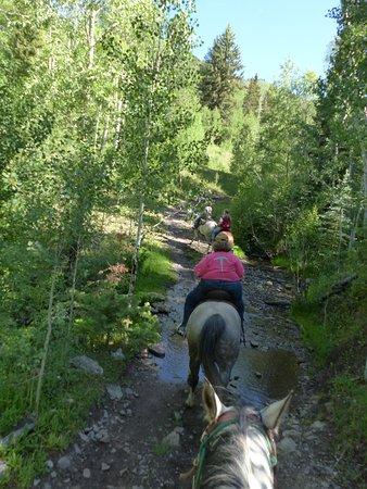 Buckaroo Trail Ride - 2 Hours: Heading through a smaill stream