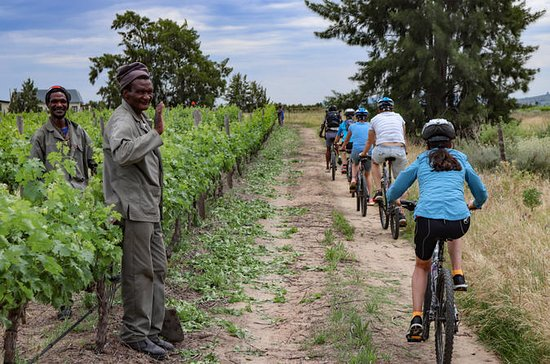 Franschhoek Vignerons Sip and Cycle...
