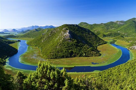 Skadar Lake & wine tour from Podgorica