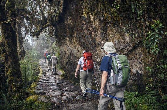 Camino Inca a Machupicchu 2d1n Servicio...