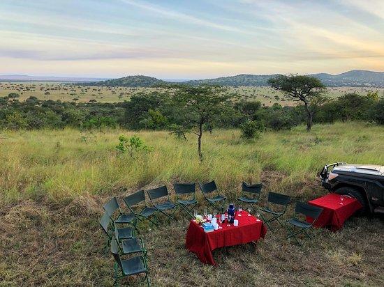 Furahia Tanzania Safari & Trekking Ltd: 等待日落的野外酒会