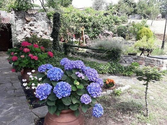 Kokkino Nero, Grécia: ogród