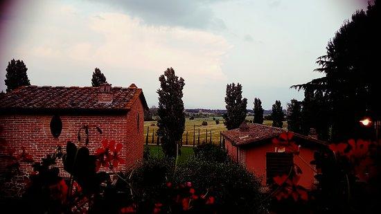 Ciggiano, Italia: View from the porch of Luca Sgnorelli