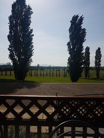 Ciggiano, Italia: View from the breakfast area