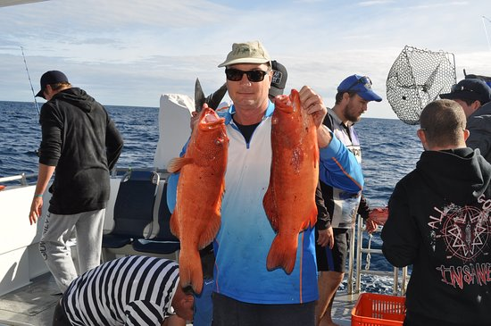 Pelican Charters: Abrolhos Islands fishing charters