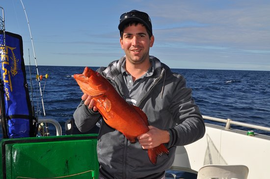 Pelican Charters: Abrolhos coral trout