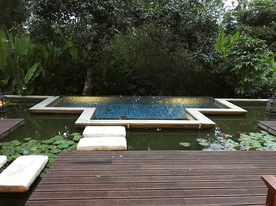 Evolve Back, Coorg: room view