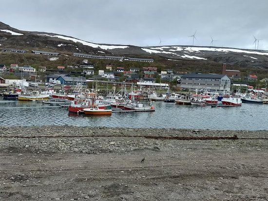 Batsfjord, Noruega: Havna, deler av Båtsfjord og Hamnefjell vindmøllepark