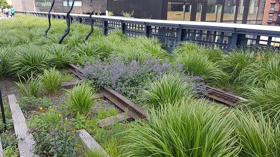 Парк Хай-Лайн: Forlatte (og forhatte) togskinner har gitt nytt liv