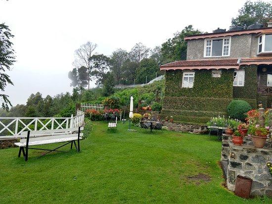 Villa Retreat: green carpet