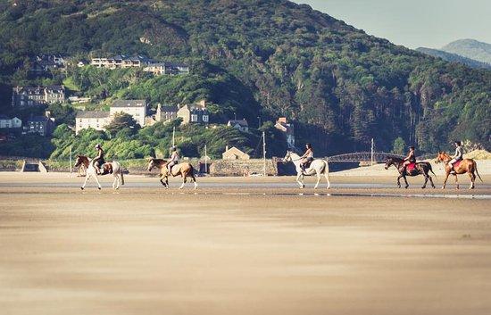 Pony Trekking at Bwlchgwyn Farm: staff ride on the beach