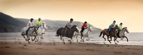 Pony Trekking at Bwlchgwyn Farm: Experienced ride on our lovely beach