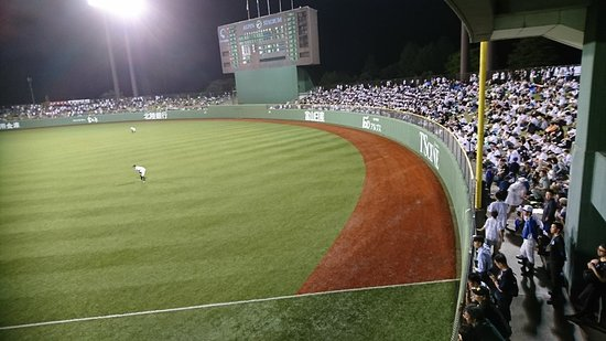Toyama Municipal Baseball Stadium Alpine Stadium