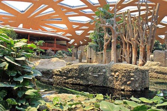 Zoo Zurich: elephant house