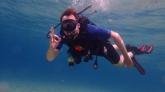 Ocean Diving Center: all ok