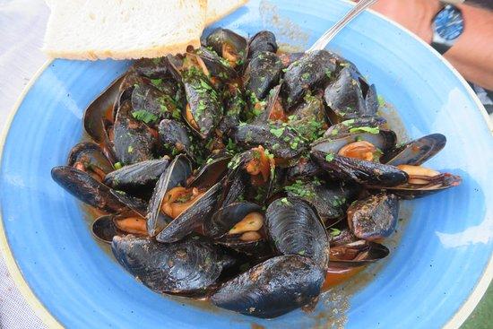 Ristorante Salus: Fabulous mussel soup