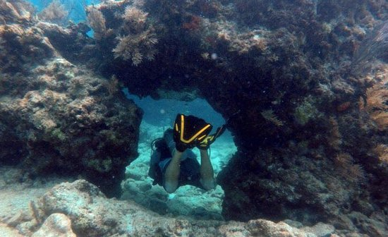 Rainbow Reef Dive Center: JD and a swim-through