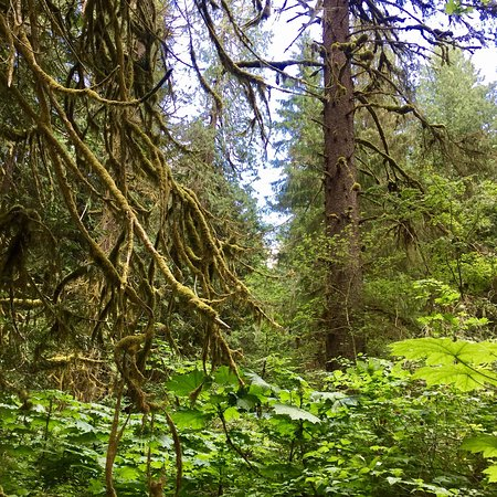 Washington: Beautiful hiking experience