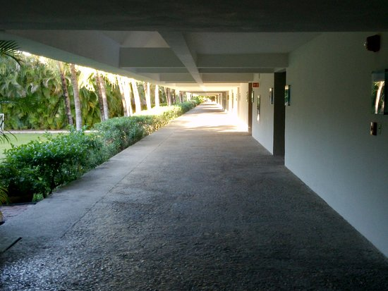 Presidente Inter-Continental Cozumel Resort & Spa: North wing. Left: soccer field, tennis courts, spa and gym (behid the bushes)