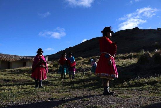 Фотография Wanderbus Ecuador