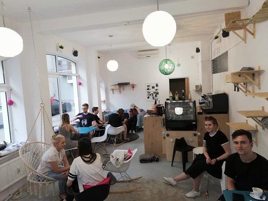 KOTON кошачье кафе: KOTON to miłe i kameralne miejsce, w którym zawsze można odpocząć.