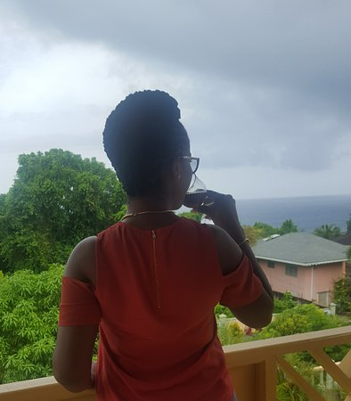 Pimento Lodge Resort: Can't get enough of the view