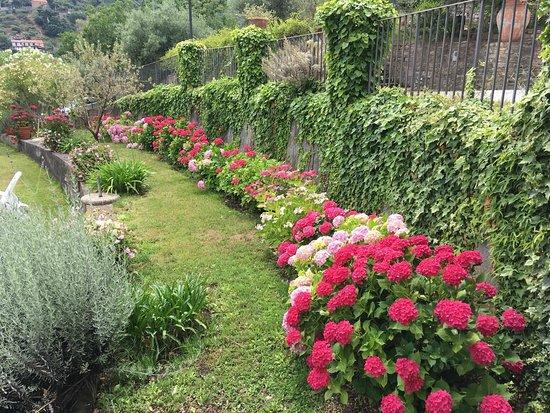 San Piero Patti, Italia: Un luogo incantato. Tanti fiori in ogni stagione