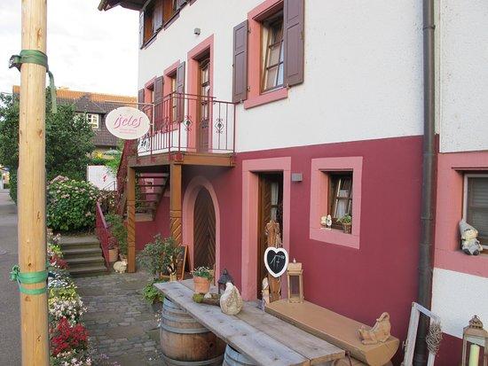 Ettenheim, Tyskland: Weingut Isele in Münchweier