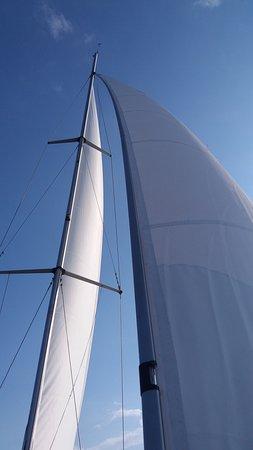 Athens Daily Cruises: Athens sailing day trips (Aegina)