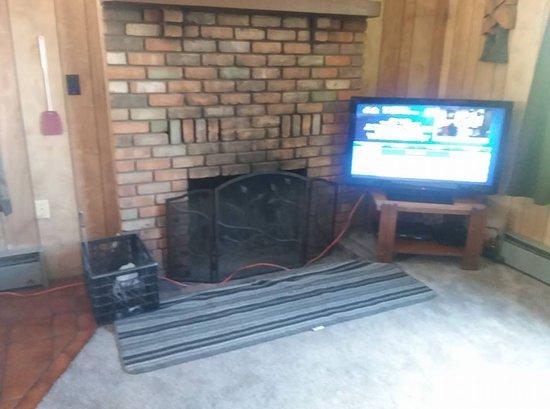 Greer, AZ: Big screen TV and direplace...wood provided