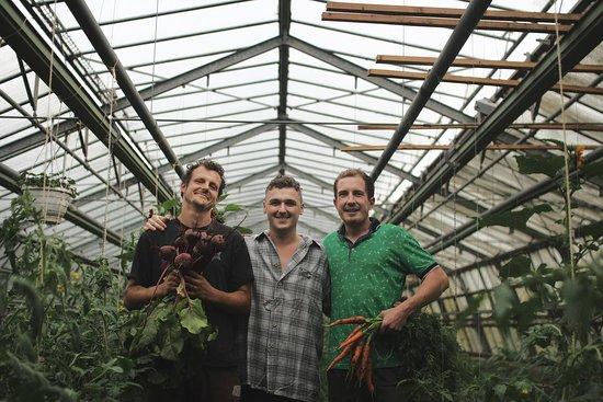 Schorndorf, Germany: Junge innovative Gärtner unterstützen unsere Küche täglich mit frischem Gemüse