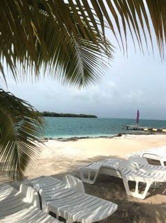 Starfish Island: The View!