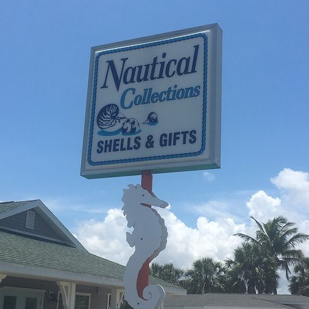 Bilde fra Nautical Collections Seashells & Gifts