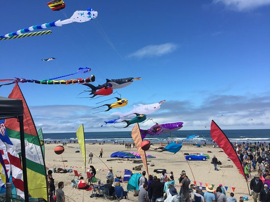 Northwest Winds Kite Shop