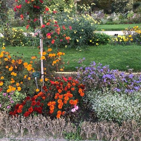 Jardin des Plantes (Paris) - 2018 All You Need to Know Before You Go (with Photos) - TripAdvisor