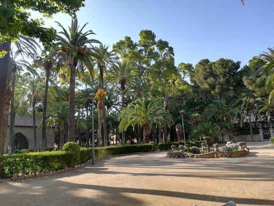 Parque de Teodoro Gonzalez