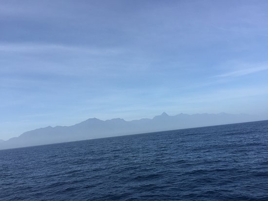 Bay Islands College of Diving: Boat ride view
