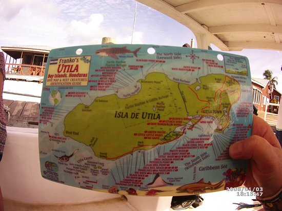 Bay Islands College of Diving: Utila Dive sites, so many!