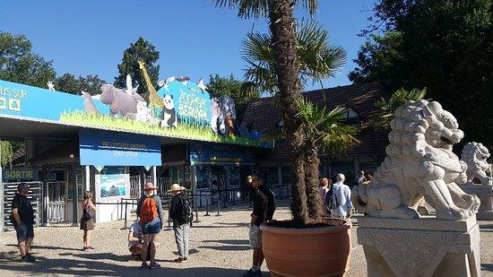 Bilde fra Hopp over linjen: ZooParc de Beauval inngangsbillett