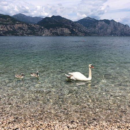 Cassone, Italy: photo2.jpg