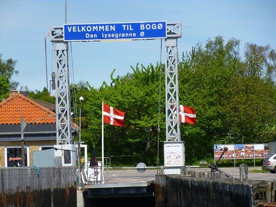 Stubbekoebing, Denmark: Hafen